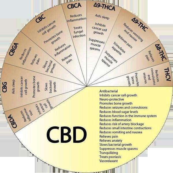 CBD-pie-chart
